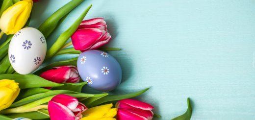 tapeta-kolorowe-tulipany-z-pisankami